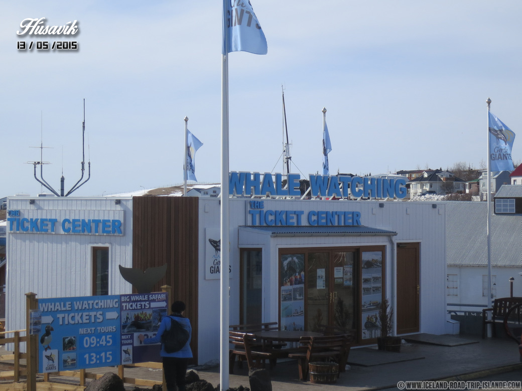 L'agence d'observation de baleines Gentle Giants à Húsavík