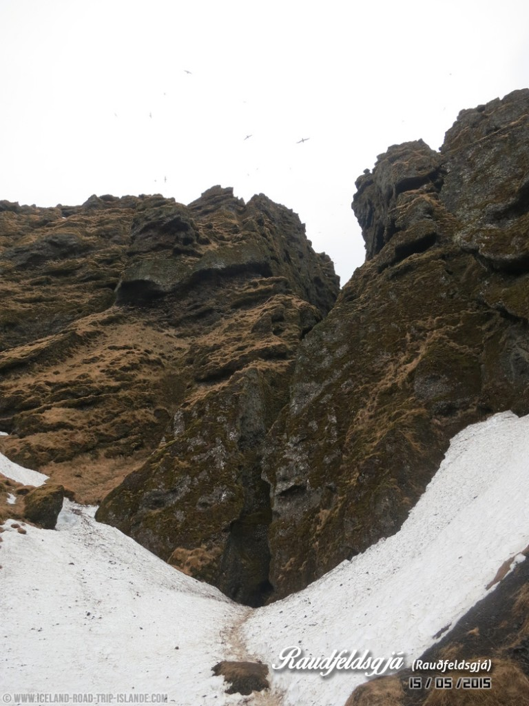 L'entrée dans la Gorge de Rauðfeldsgjá